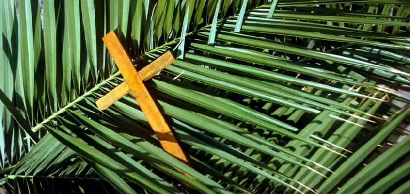 Niedziela Palmowa czyli Męki Pańskiej, Rok A